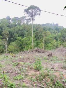 Ejen Tanah Kuala Klawang Jelebu